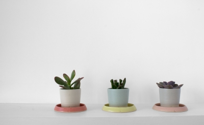 Laura Magahy - Ase succulent pots x 3