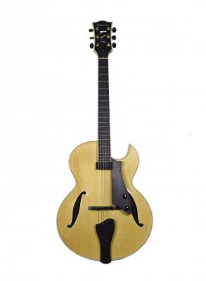 Luca stanzani instruments of stanzanis liuteria 2