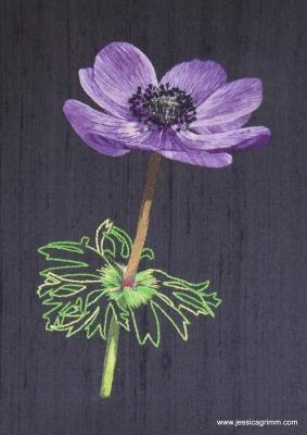 Jessica Grimm - Needlepainting purple anemone