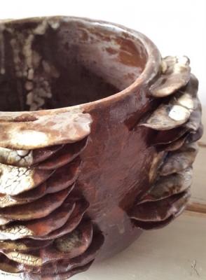 Sandrine Bretton, mushroom mania