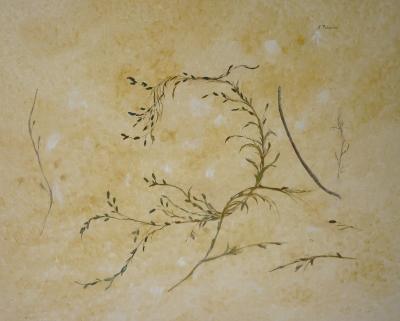 Solange Palacios-Dupont - sable et algues arabesques 2012