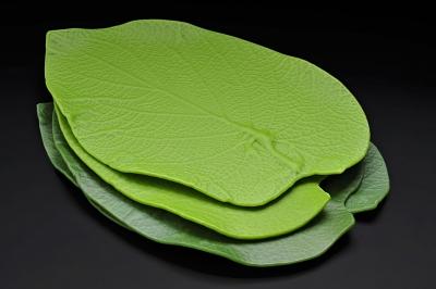 Luesmavega plate for pacomendez hojasanta hojasanta