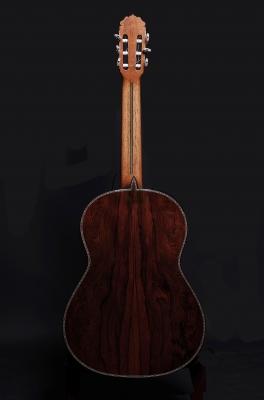 Guitarras Teodoro Pérez  - Suelo aniversario