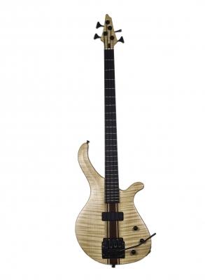 Luca stanzani instruments of stanzanis liuteria 1