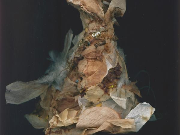 Agnès Pianta Dosi - Cheyenne1 recto