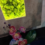 Cadre lichen led