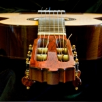 Guitarra homenaje model