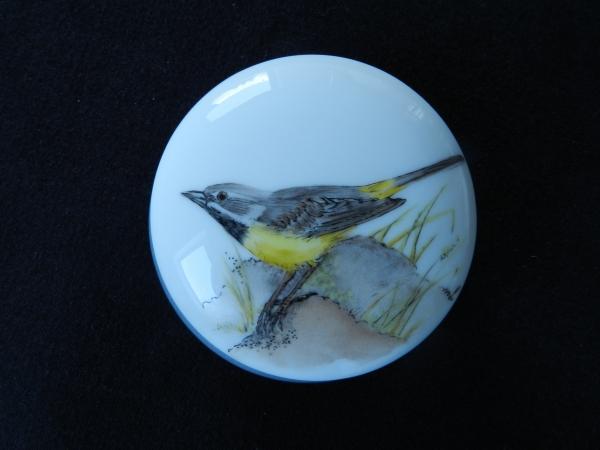 Oiseaux demeuldre 011