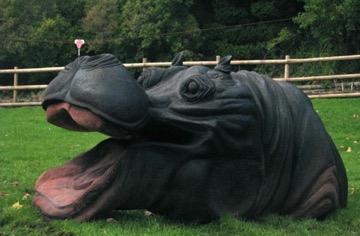 Hippo in situ