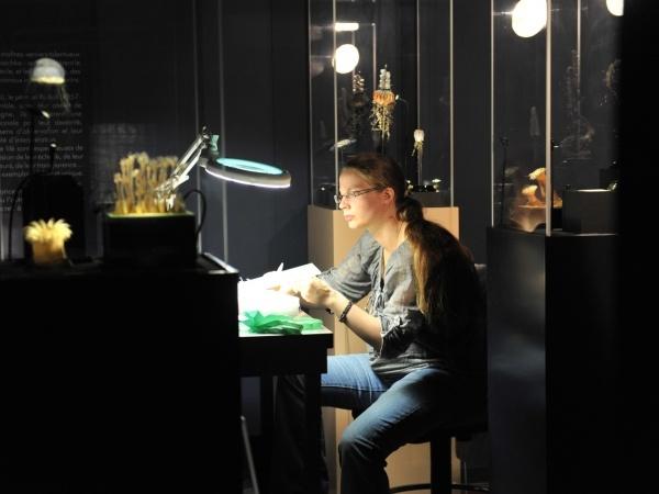 Projet de restauration et de mise en valeur de la collection de modèles en verre des Blaschka de l'Aquarium-museum de Liège © J. Ninane