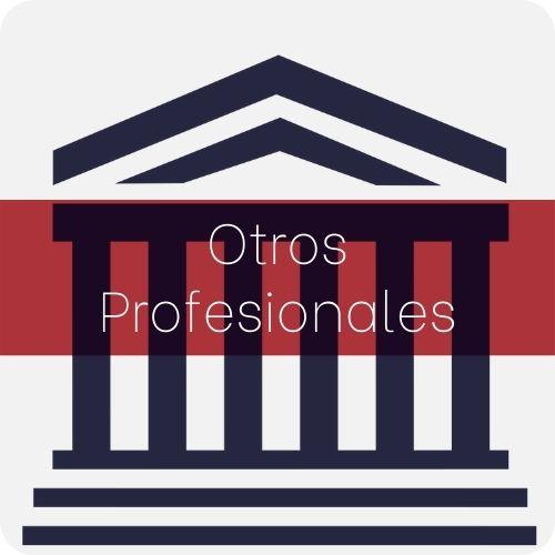 Sp otros profesionales (1)